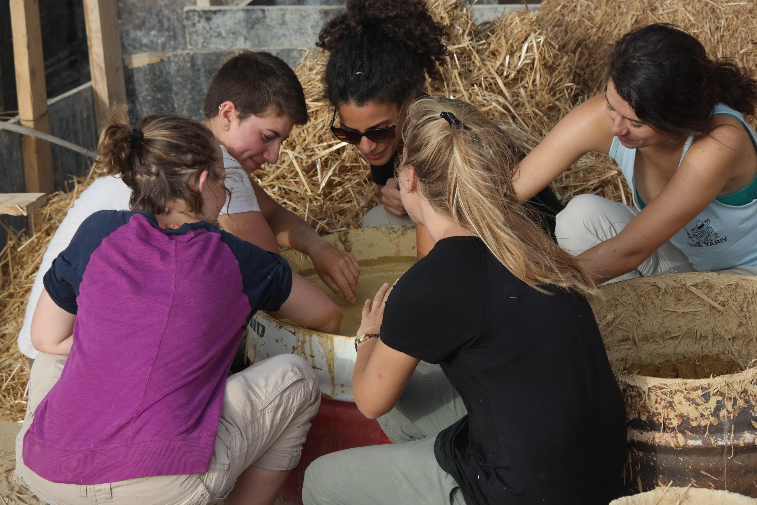 עמותת ניצן - חווה טיפולית: חוות נוער חקלאית, טיפול באמצעות שטח,